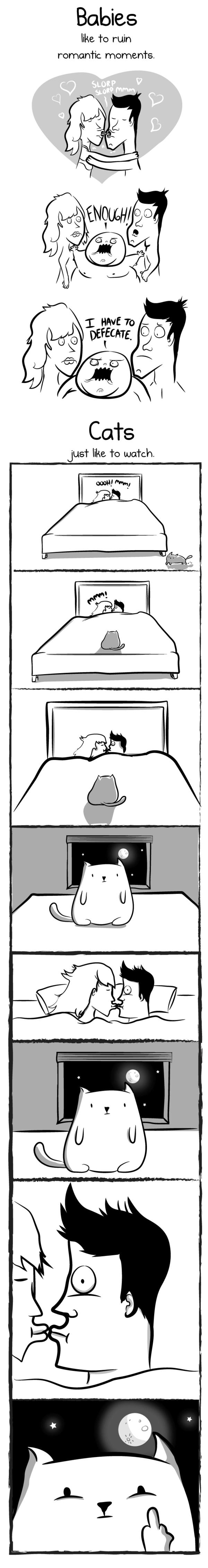 having a baby vs having a cat 7