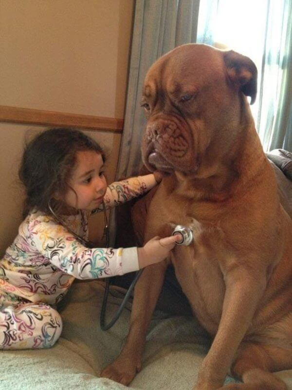 dogs do anything to make kids happy 10