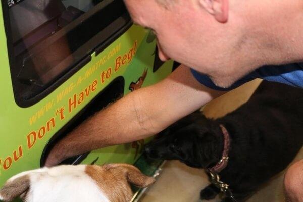 dog vending machine 7
