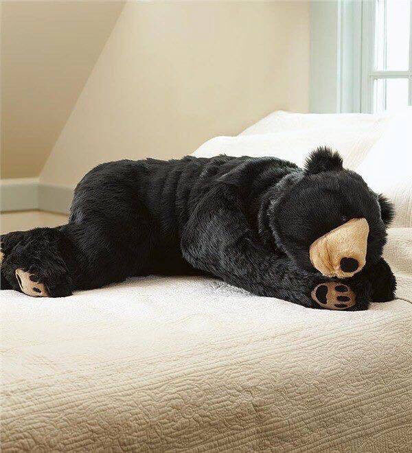 bear sleeping bag 7