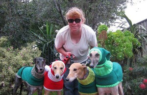 Sweaters For Greyhounds 1
