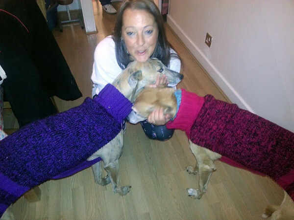 Sweaters For Greyhounds 6
