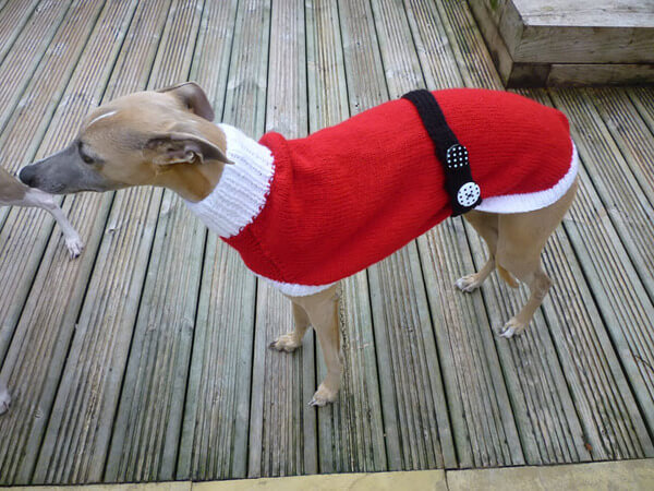 Sweaters For Greyhounds 7