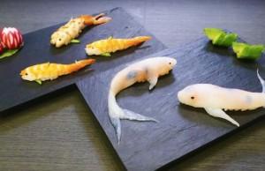 sushi koi 1