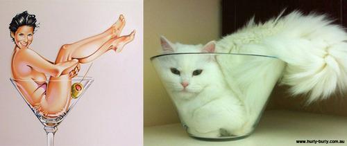 cat pinup girls 2