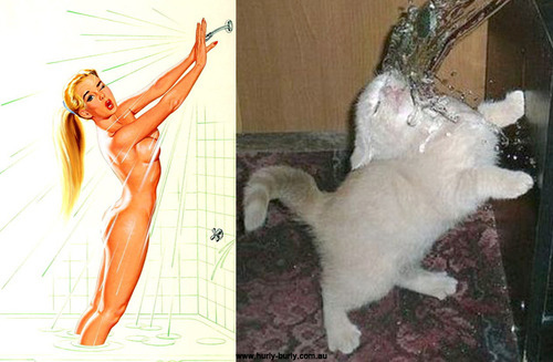 cat pinup girls
