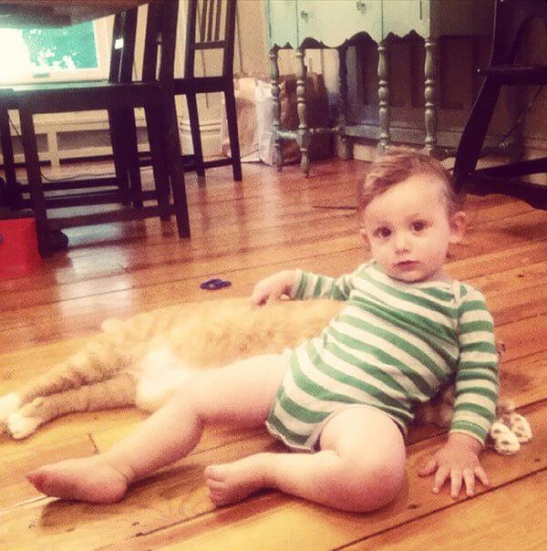 Lary the cat 8