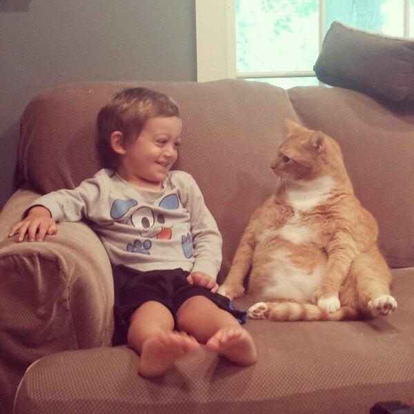 Larry the cat 1