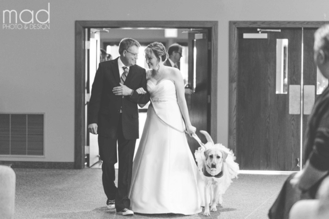 Bride And Her Service Dog 2