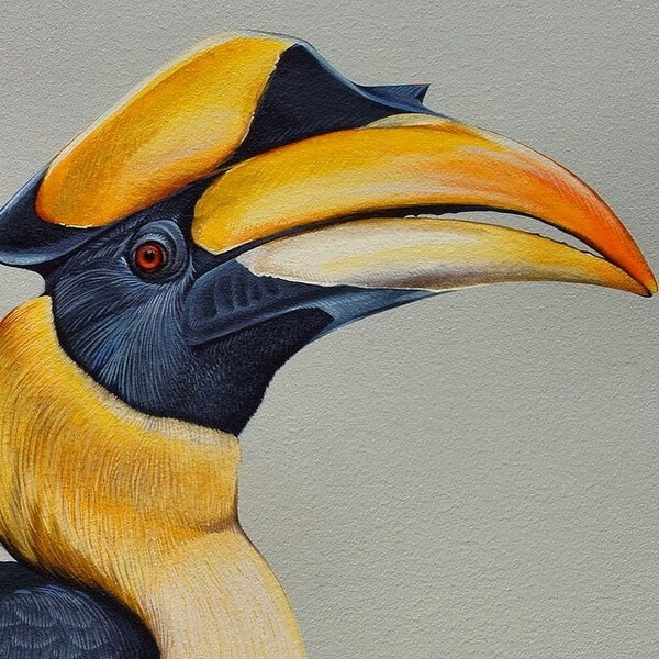 birds painting 13