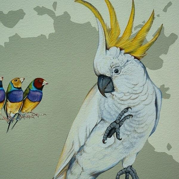 birds painting 16