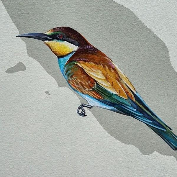 birds painting 18