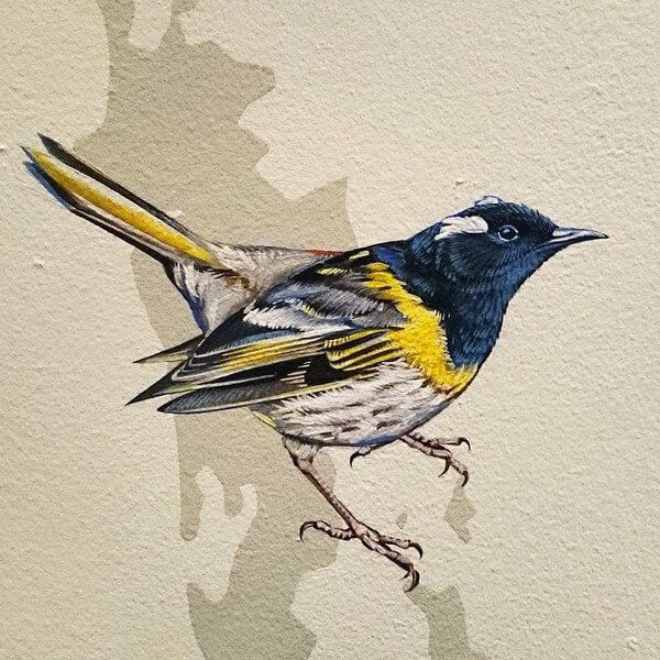 birds painting 19