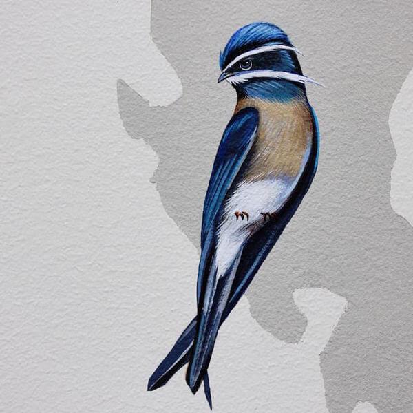 birds painting 20
