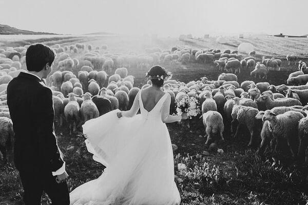 best Wedding Photographs 14