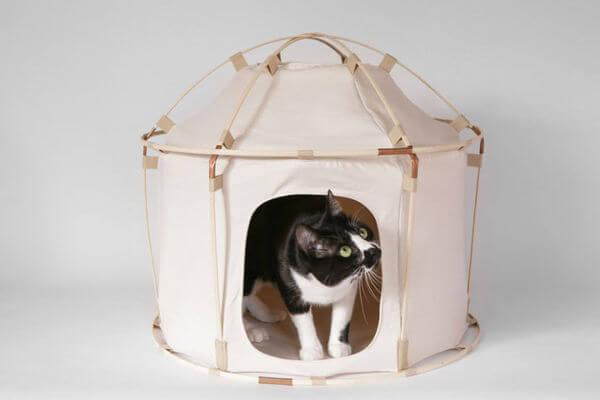 cat camping gear 4