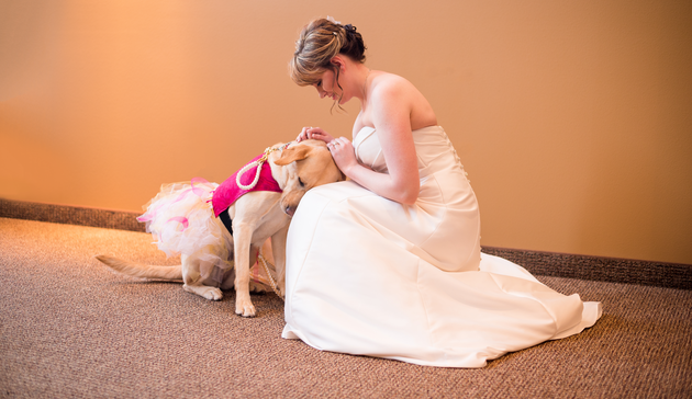 bride-and-her-service-dog