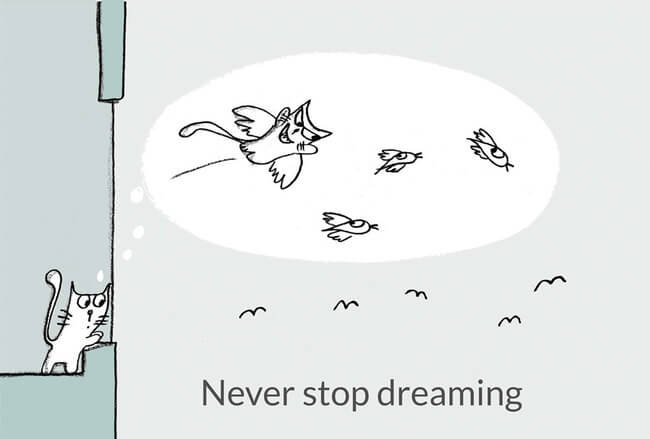 Life Lesson From Cats 11