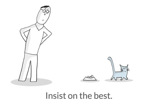 Life Lesson From Cats 12