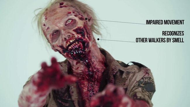 Zombies Evolution 8