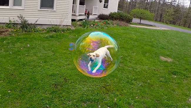 Photos taken at the right time 1