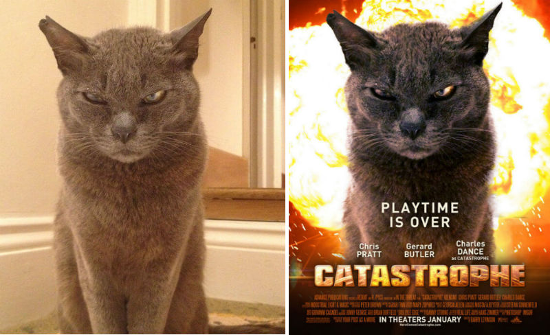 everyday photos turned into movie posters feat