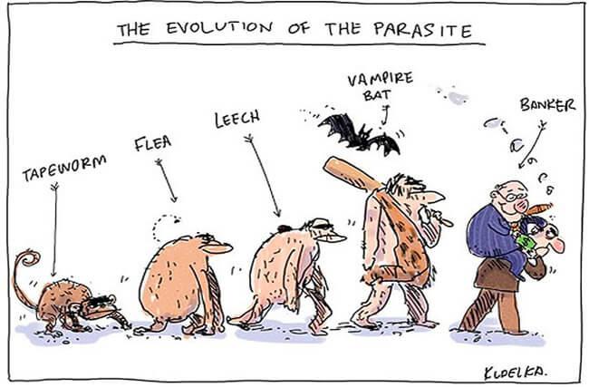 funny evolution 7