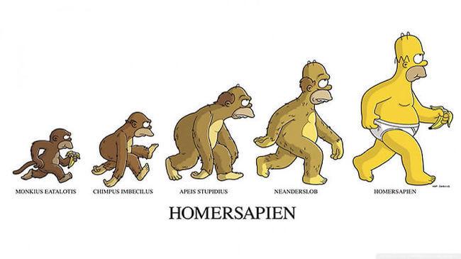 funny evolution 15