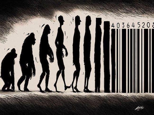 funny evolution 4