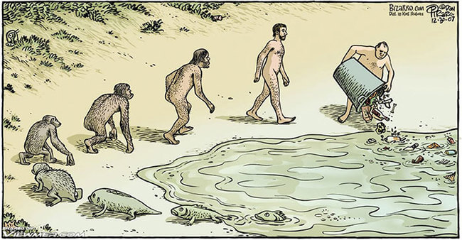 These Satirical Funny Evolution Cartoons Will Make You Question