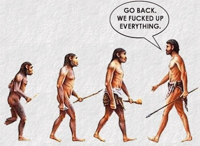 funny evolution 9