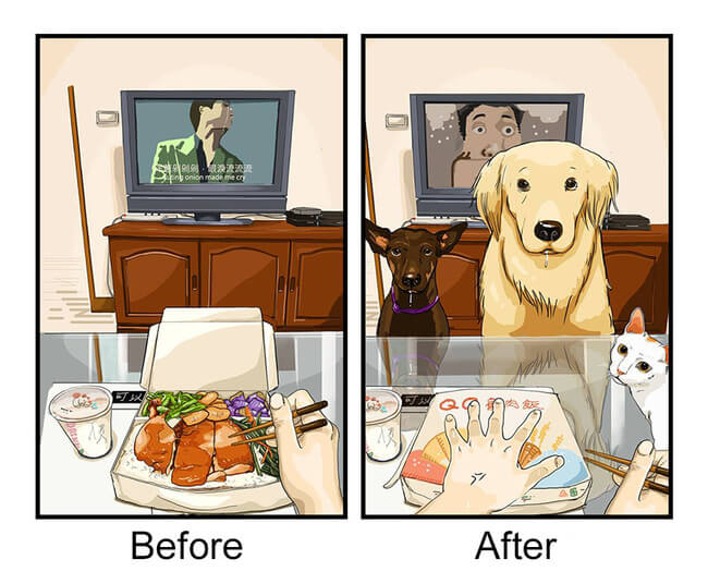 Life Before And After Getting A Dog 1