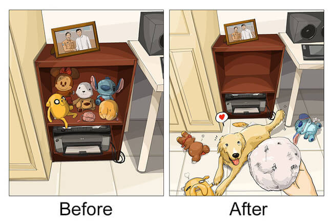 life before and after getting dog 7