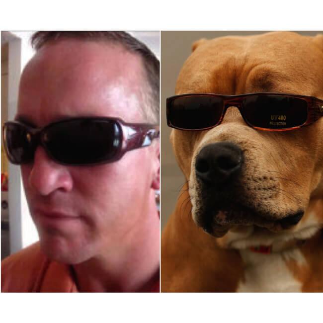 dog look like peyton 8