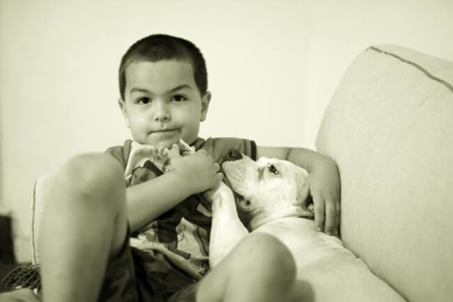 Dog And Boy 5