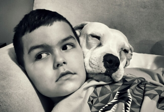 Dog And Boy 6