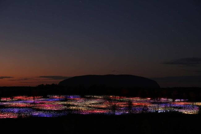 Field of Light 2