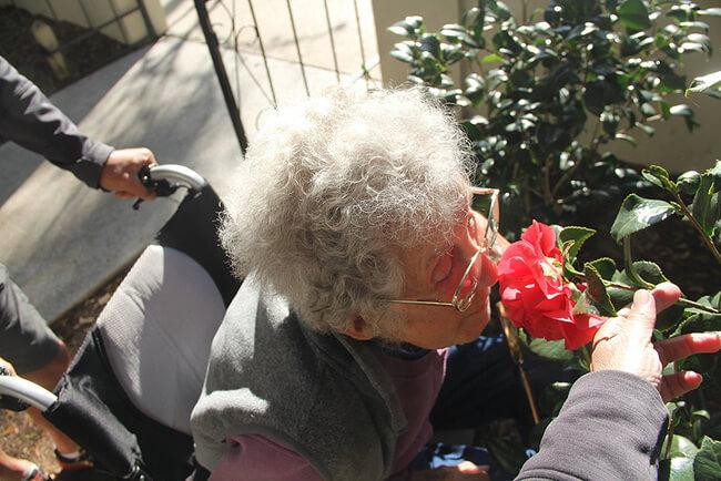 90 year old grandma road trip 7