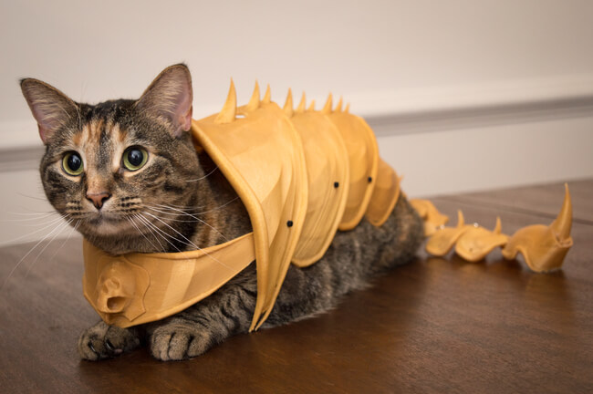 3D Printed Cat Armor 1