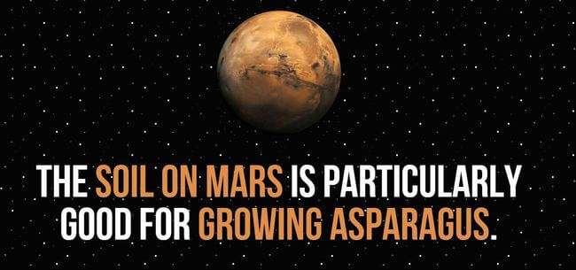cool facts about mars 13
