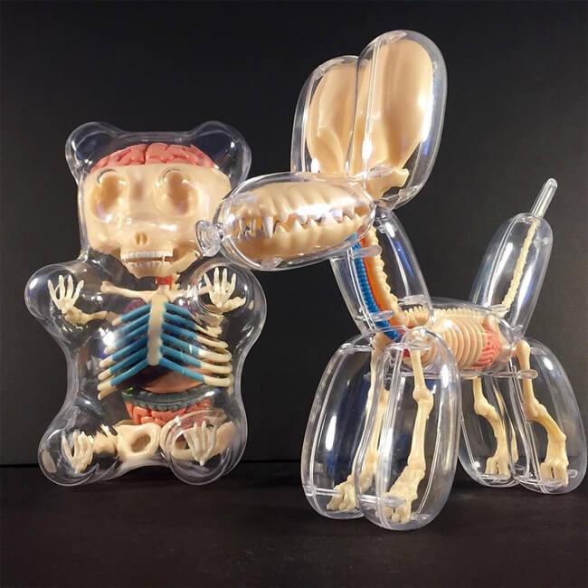 Anatomical Balloon Dog 8