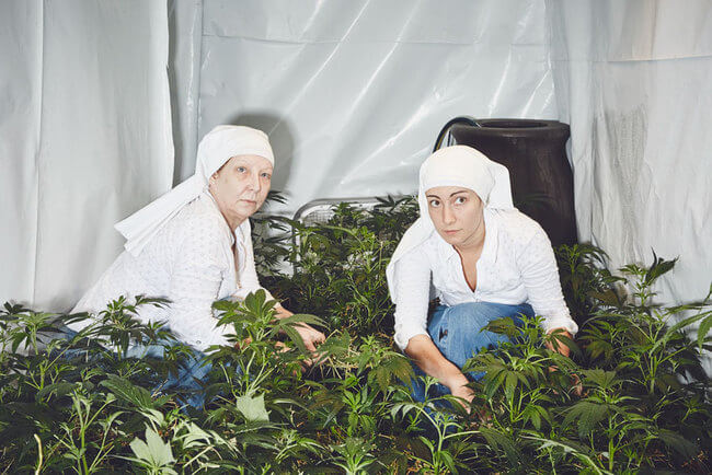 Nuns Growing ganja 5