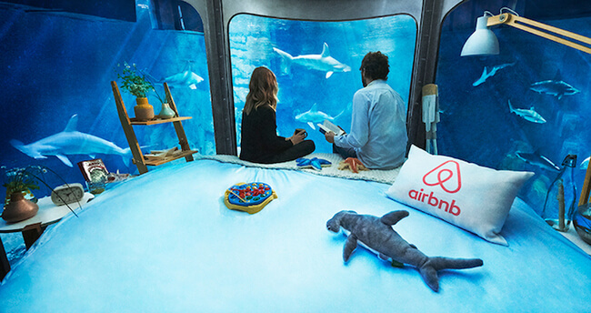 Paris Aquarium Lets Guests Sleep in Submerged Glass Room Surrounded by 35 Sharks 3