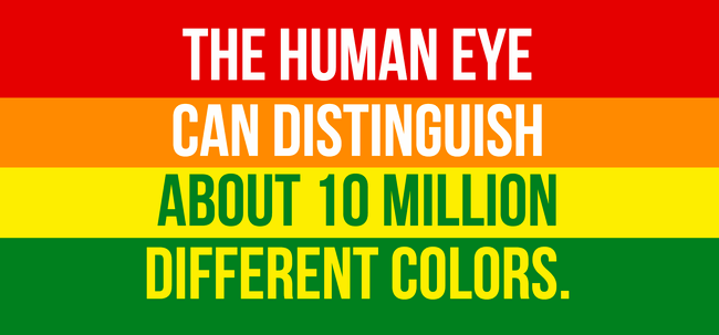 Interesting Facts About The Eyes 1