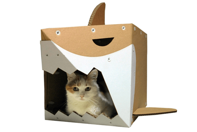 Cardboard Boxes for cats 5