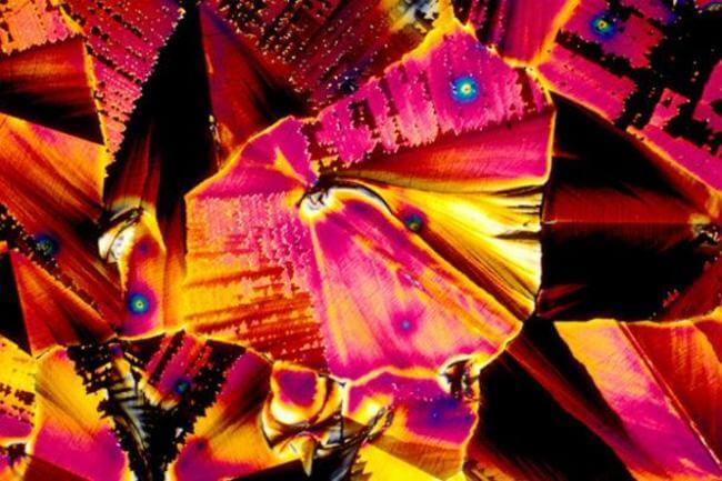 How Your Favorite Alcoholic Drinks Look Under a Microscope 2
