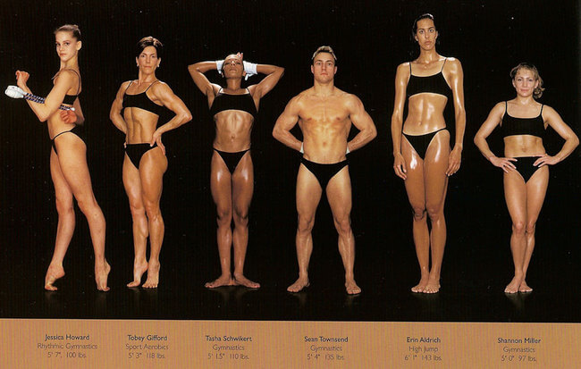 olympic athlete body types 11