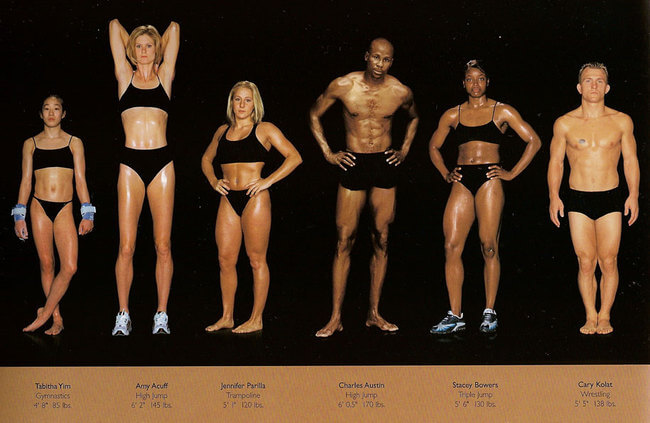 olympic athlete body types 4
