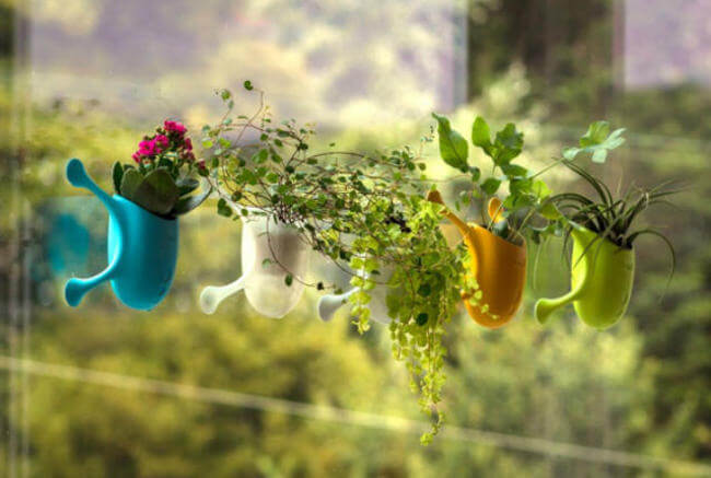 Suction Cup Mini Planters 1