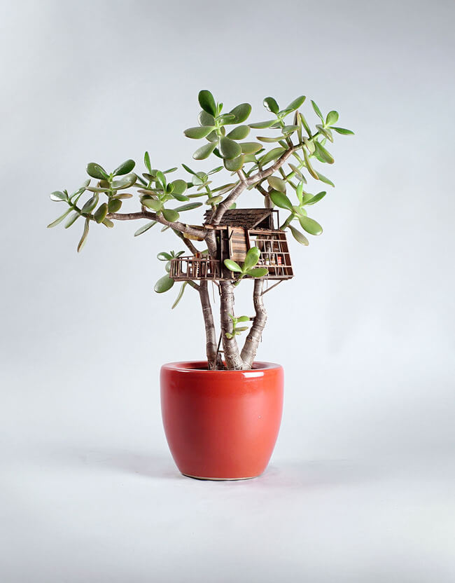 miniature Treehouses 9